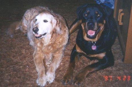 Bo and Mathaeser